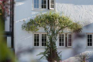 Timber Windows Essex